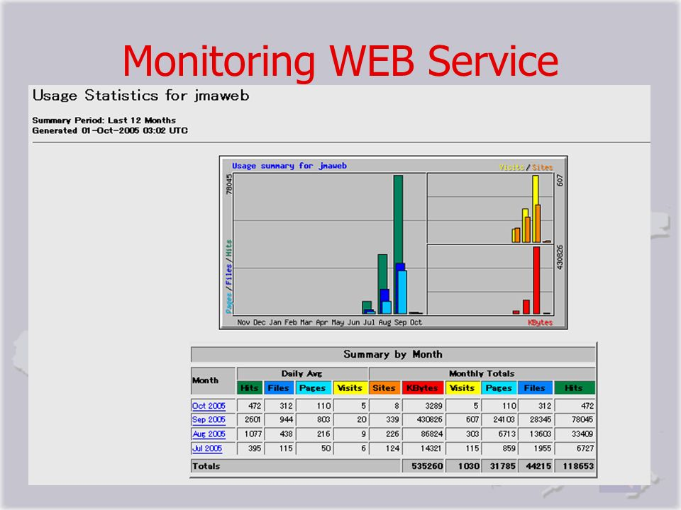 Monitoring WEB Service