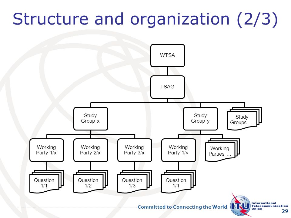 Structure and organization (2/3)