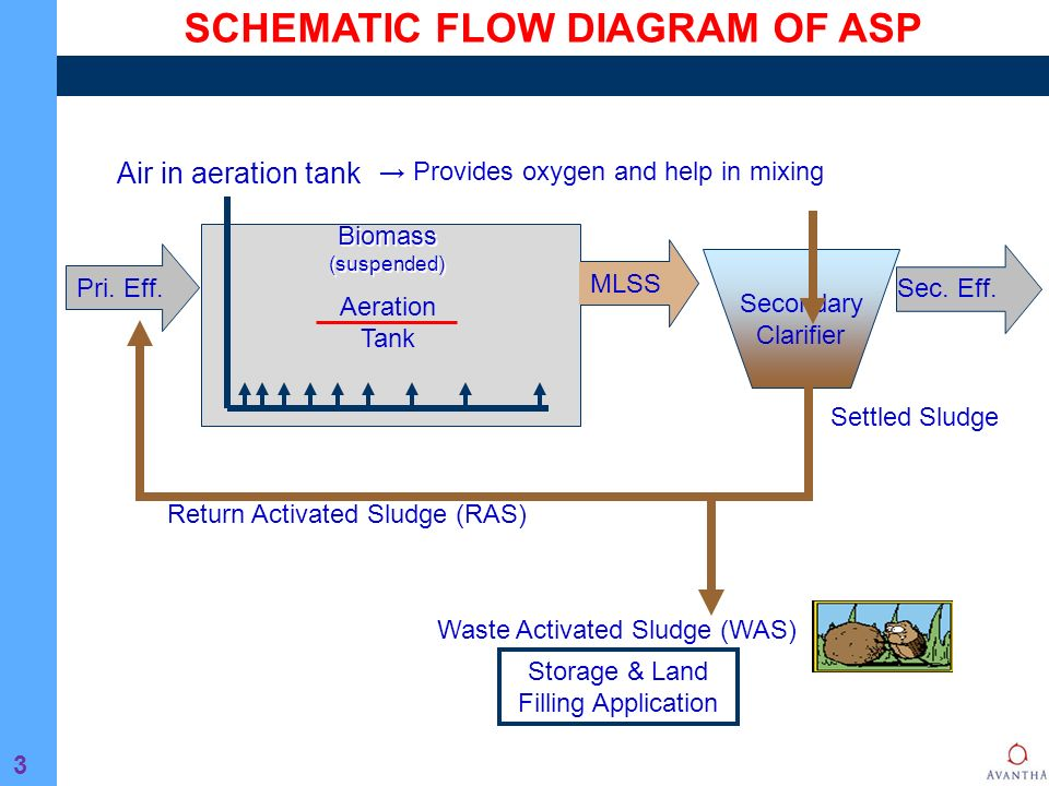 Activated Sludge Process SlideShare     activated sludge process