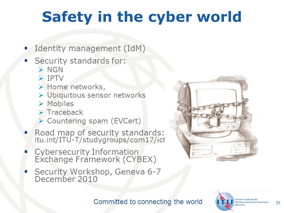 Safety in the cyber world