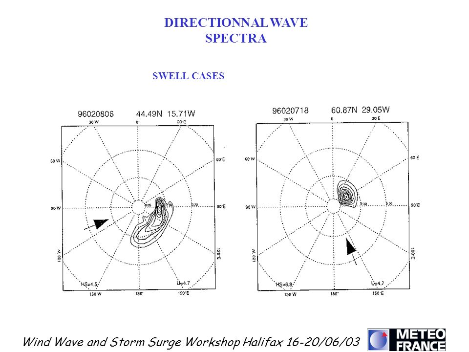 DIRECTIONNAL WAVE SPECTRA