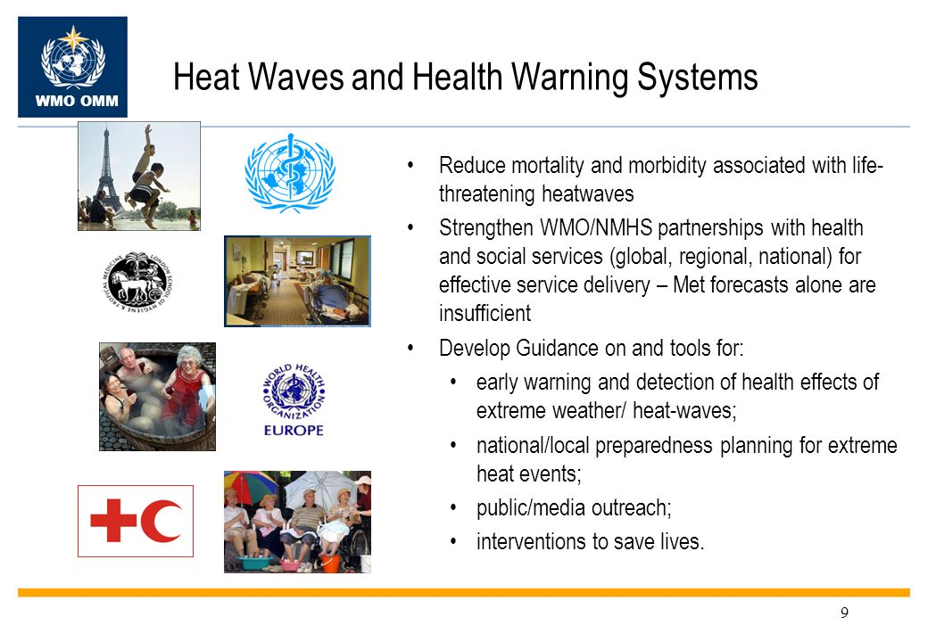 Heat Waves and Health Warning Systems