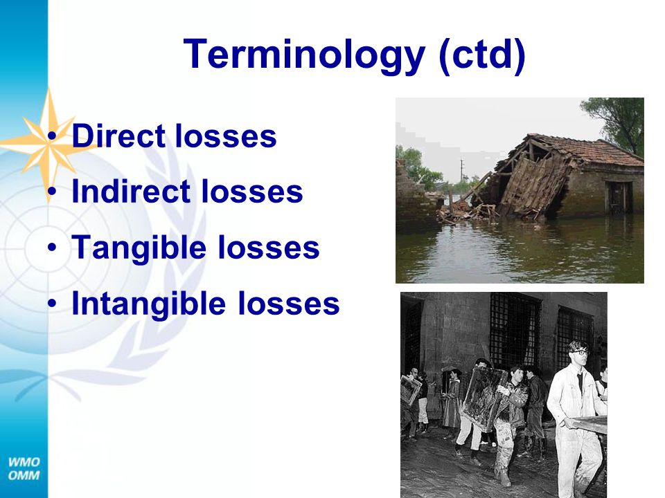Terminology (ctd) Direct losses Indirect losses Tangible losses