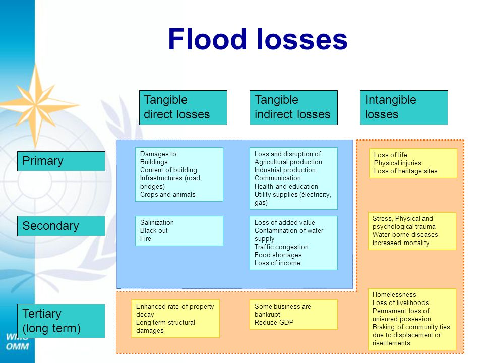 Flood losses Tangible direct losses Tangible indirect losses