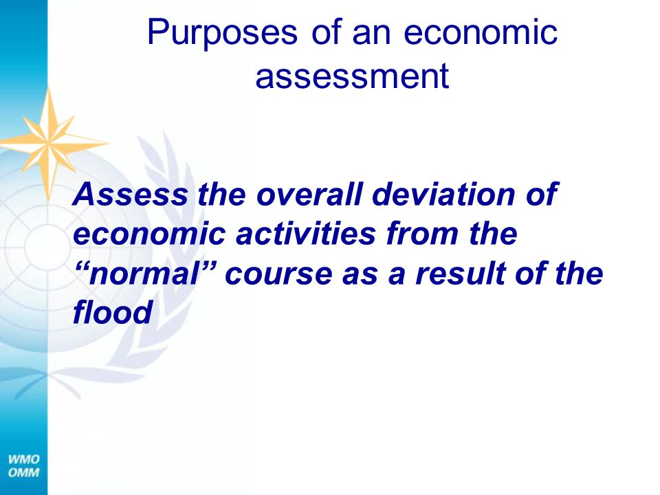 Purposes of an economic assessment
