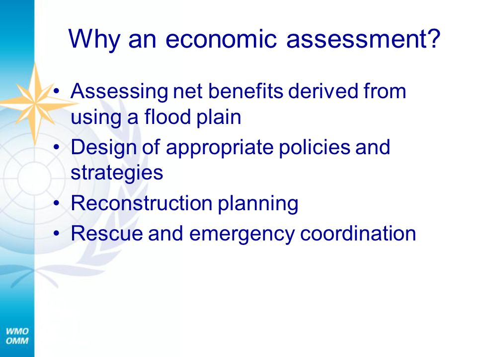 Why an economic assessment