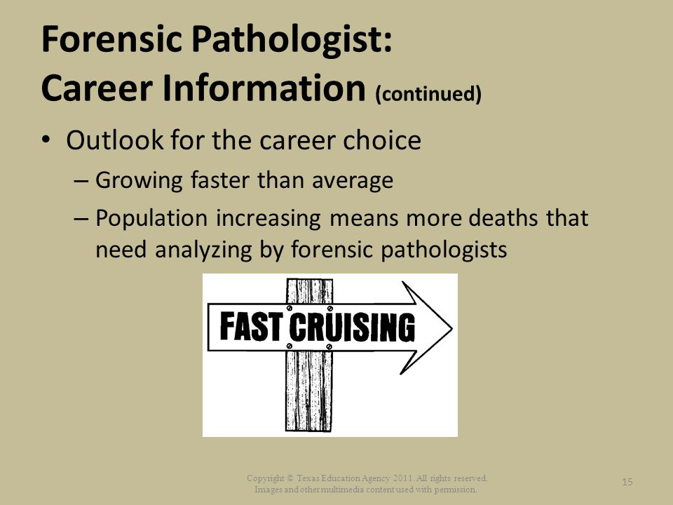 forensic anthropologist a career choice Tweet forensic anthropologist career forensic anthropology is a the final choice of career as a forensic anthropologist is working for a state.