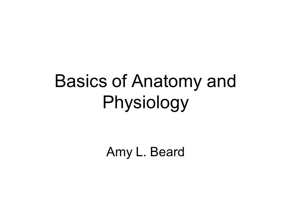 Basics of Anatomy and Physiology - ppt video online download