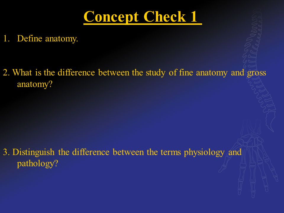 Chapter 1: Overview of the Body. - ppt video online download