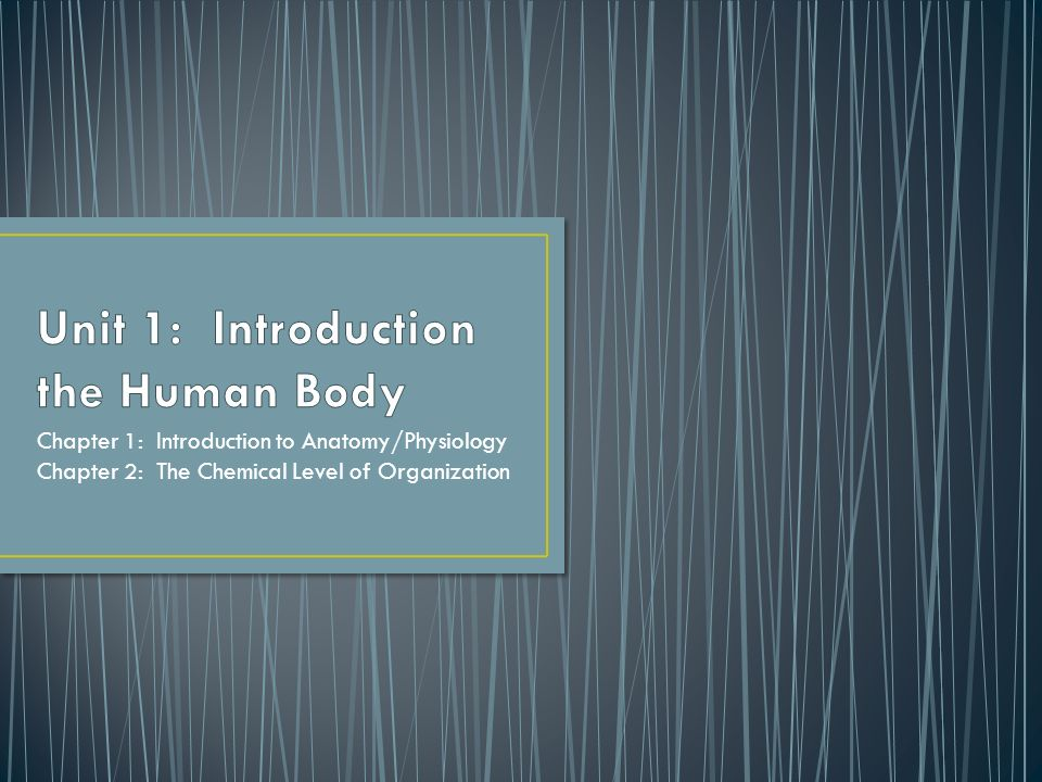 Unit 1: Introduction the Human Body - ppt video online download