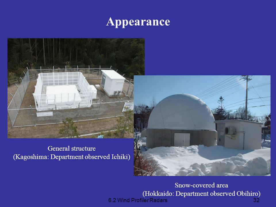 Appearance General structure (Kagoshima: Department observed Ichiki)
