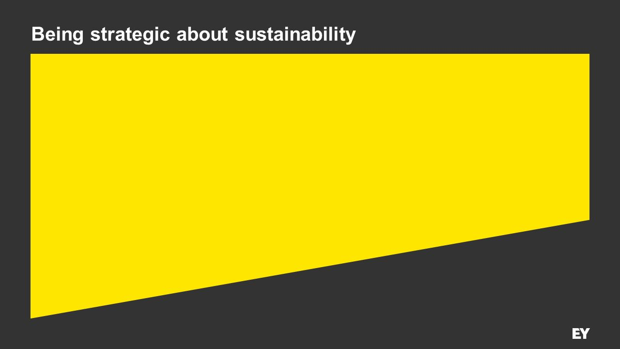 Being strategic about sustainability