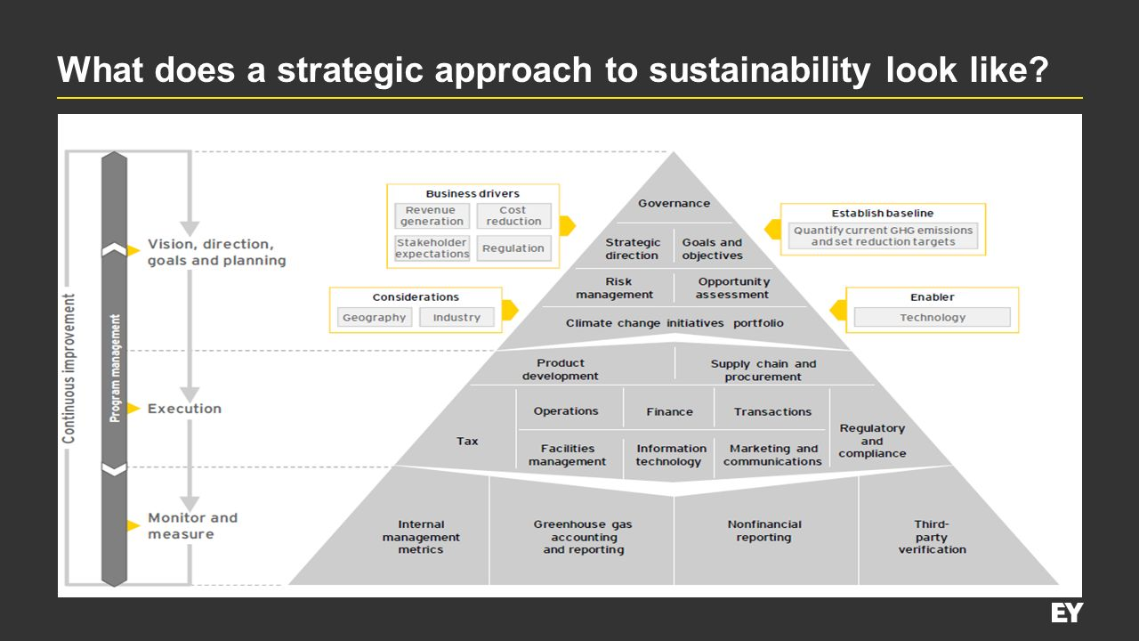 What does a strategic approach to sustainability look like