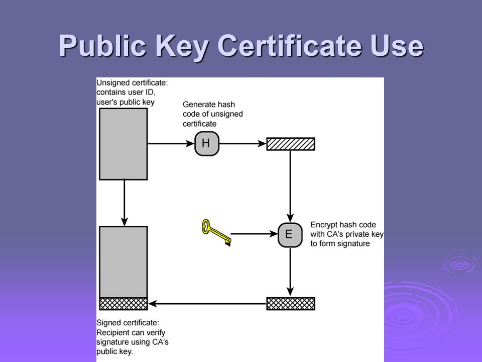Public Key Certificate Use