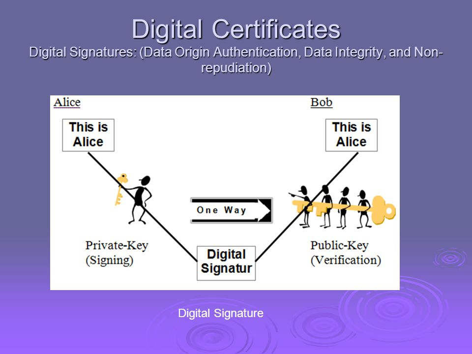 Digital Certificates Digital Signatures: (Data Origin Authentication, Data Integrity, and Non-repudiation)