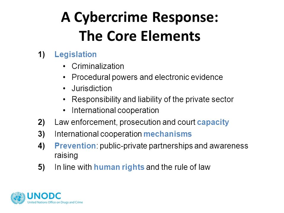 A Cybercrime Response: The Core Elements
