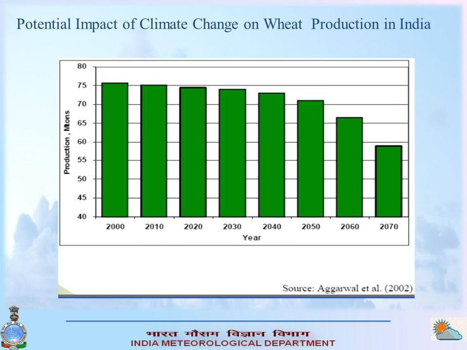 Potential Impact of Climate Change on Wheat Production in India