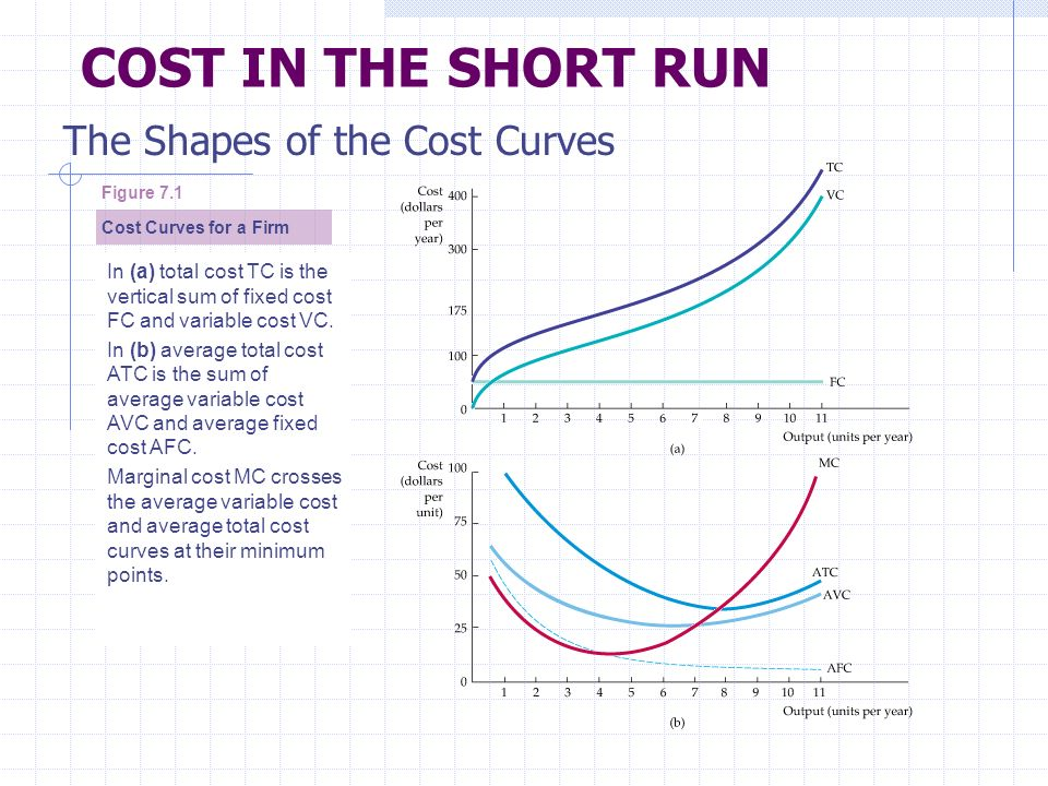 chapter 7 the cost of production ppt download