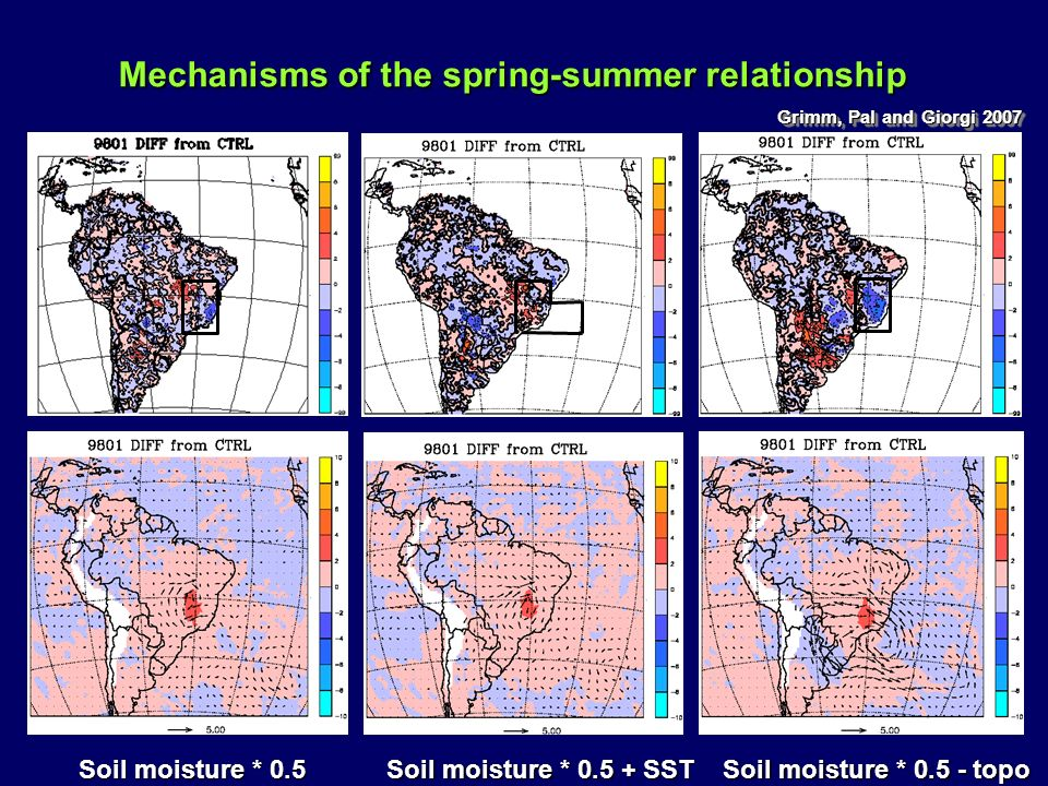 Mechanisms of the spring-summer relationship