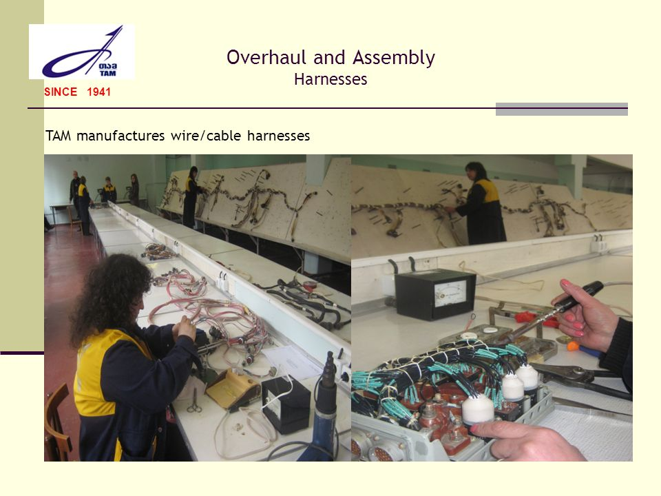 Overhaul and Assembly Harnesses
