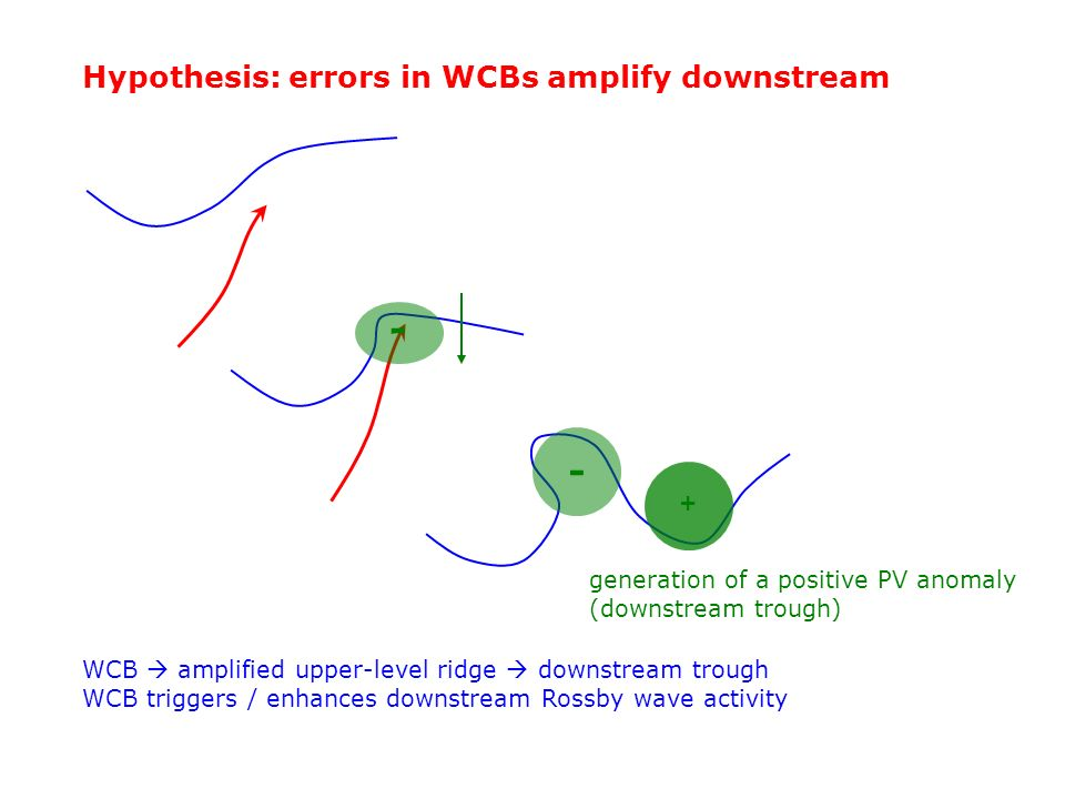 - - Hypothesis: errors in WCBs amplify downstream