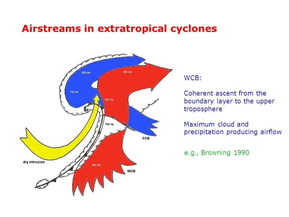 Airstreams in extratropical cyclones