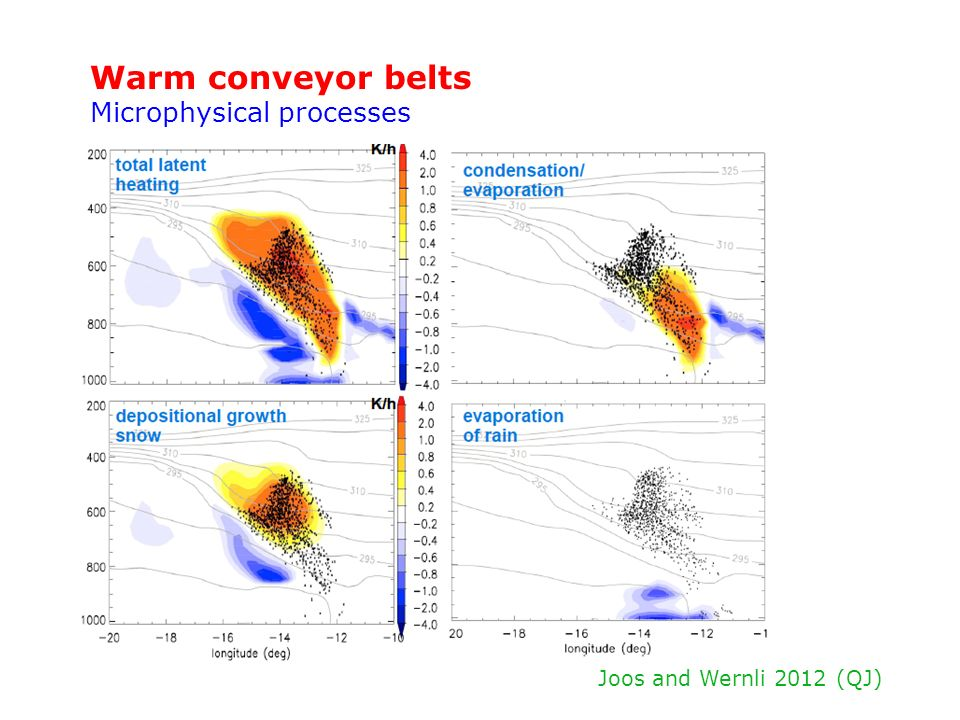 Warm conveyor belts Microphysical processes Joos and Wernli 2012 (QJ)