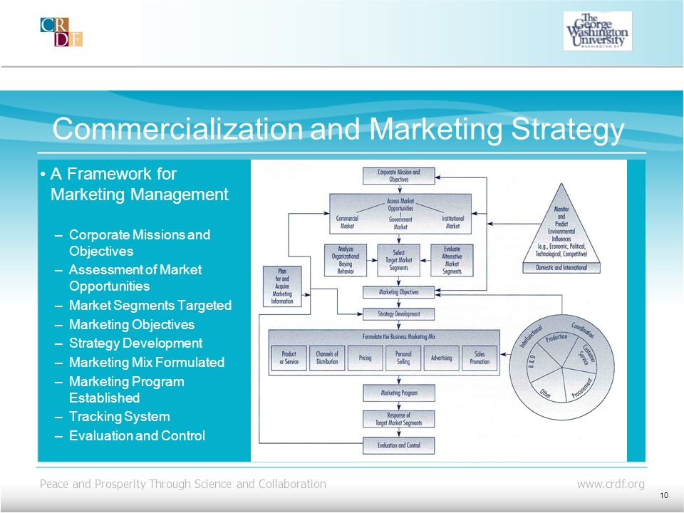 Commercialization and Marketing Strategy