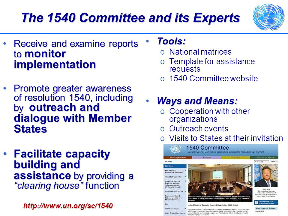 The 1540 Committee and its Experts