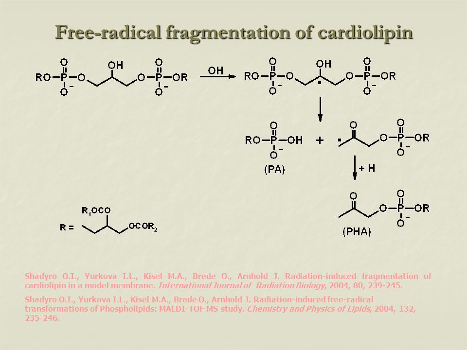 Free-radical fragmentation of cardiolipin