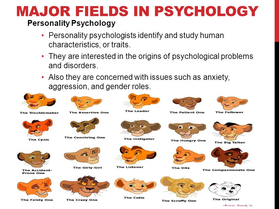 fields of psychology Discover a large variety of psychology careers and career opportunities in psychology review psychology careers,  several fields of psychology are growing at a.