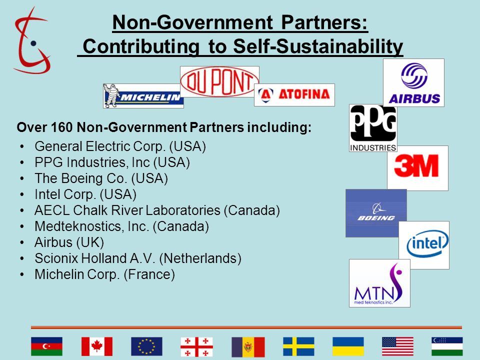 Non-Government Partners: Contributing to Self-Sustainability