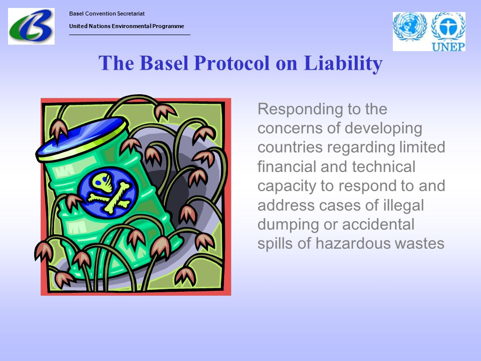 The Basel Protocol on Liability