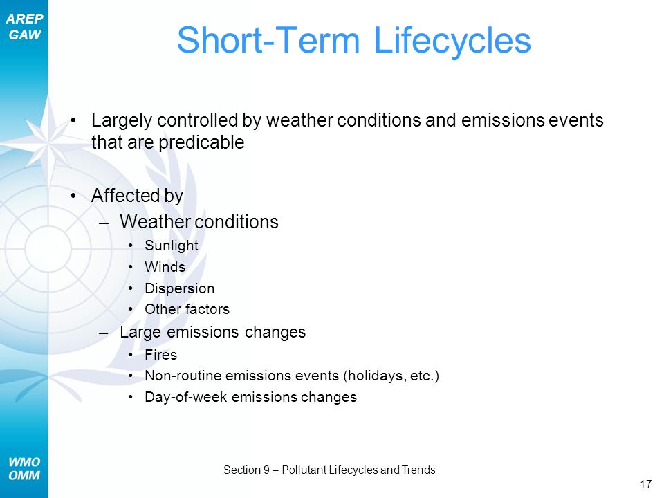 Short-Term Lifecycles