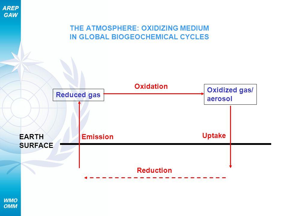 THE ATMOSPHERE: OXIDIZING MEDIUM IN GLOBAL BIOGEOCHEMICAL CYCLES