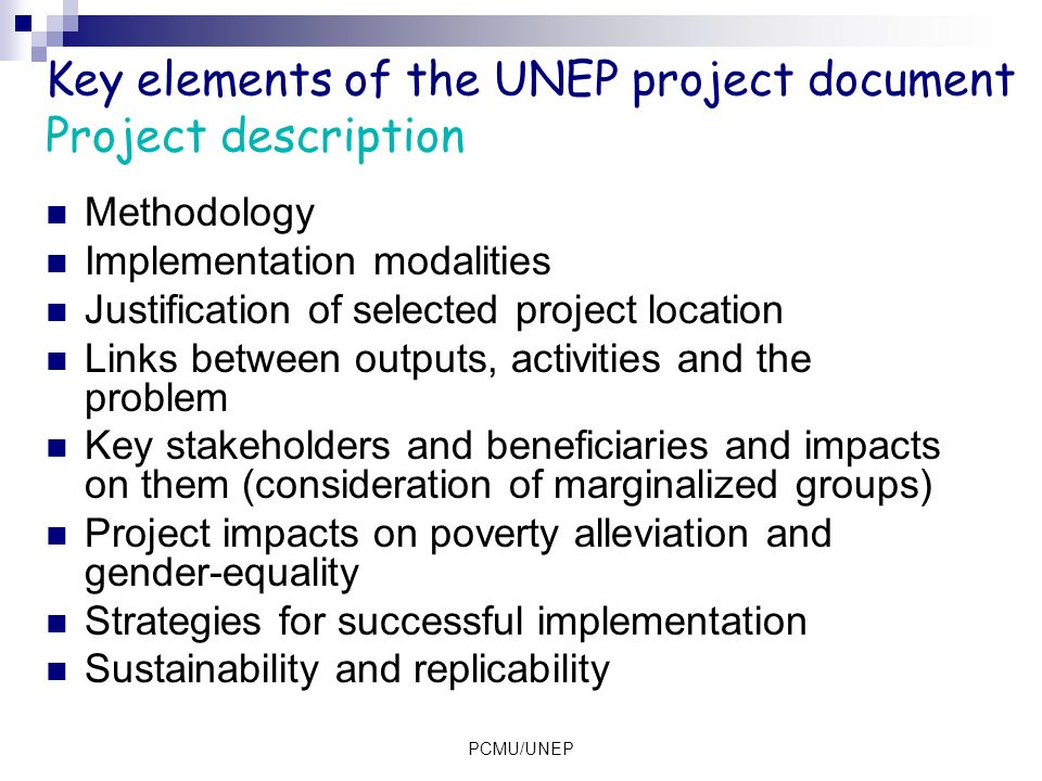 Key elements of the UNEP project document Project description