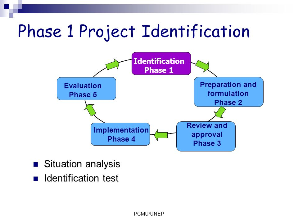 Phase 1 Project Identification
