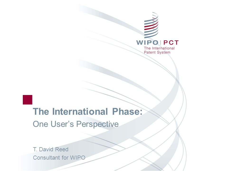 The International Phase: One User's Perspective