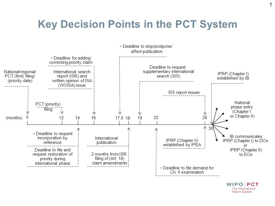 Key Decision Points in the PCT System