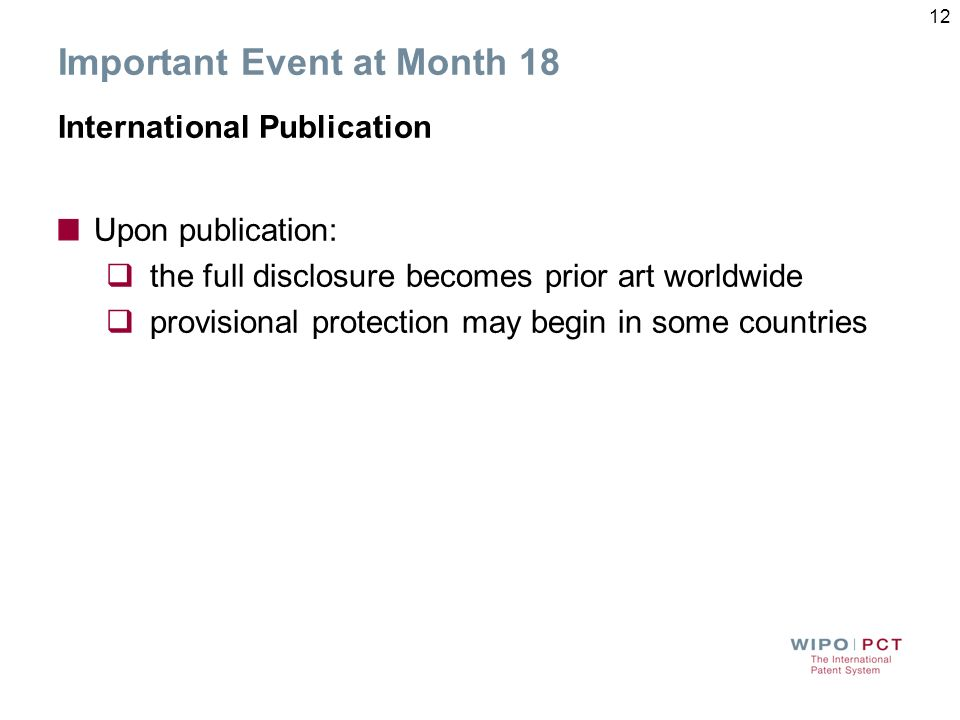 Important Event at Month 18 International Publication