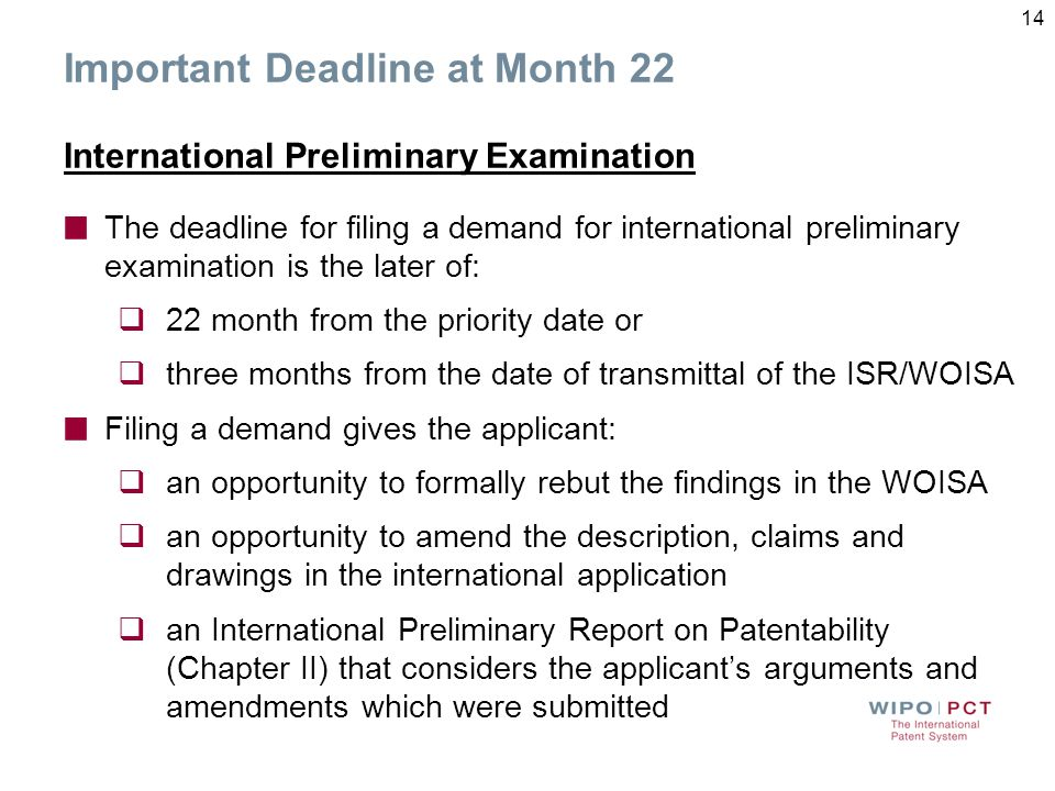Important Deadline at Month 22 International Preliminary Examination