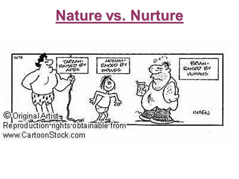 Cognitive Psychology Nature Vs Nurture