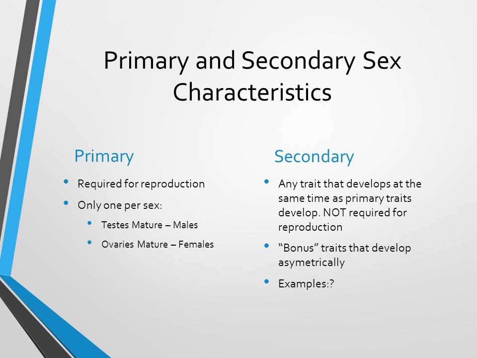 Primary And Secondary Sexual Characteristics