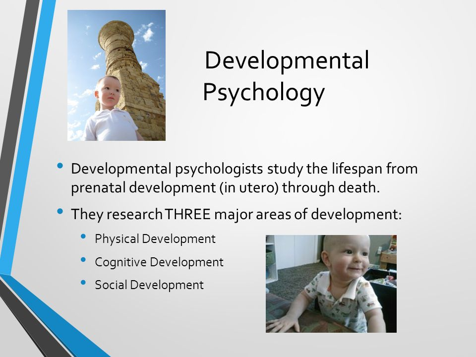 developmental psychology and adolescence The society's developmental psychology section promotes the scientific study of the cognitive, emotional,  childhood, adolescence and into adulthood.