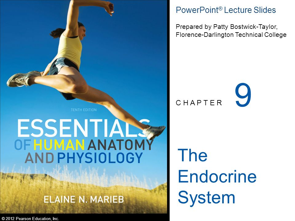 9 The Endocrine System PowerPoint® Lecture Slides C H A P T E R ...