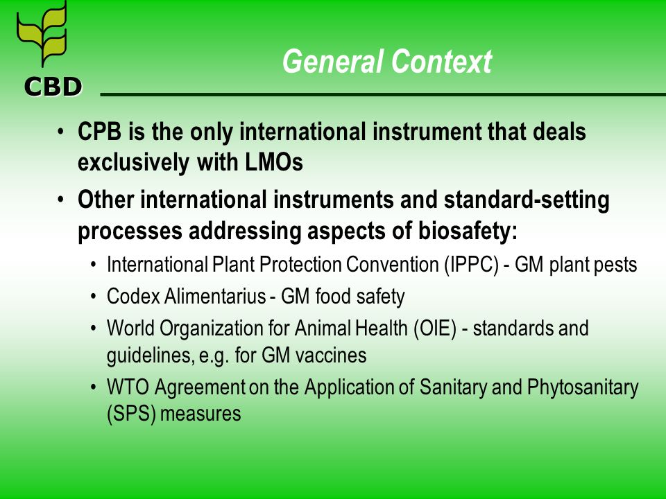 General Context CPB is the only international instrument that deals exclusively with LMOs.