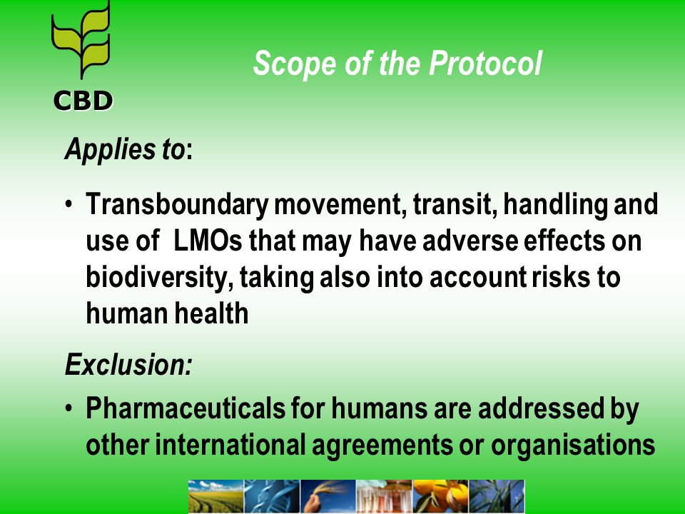 Scope of the Protocol Applies to: