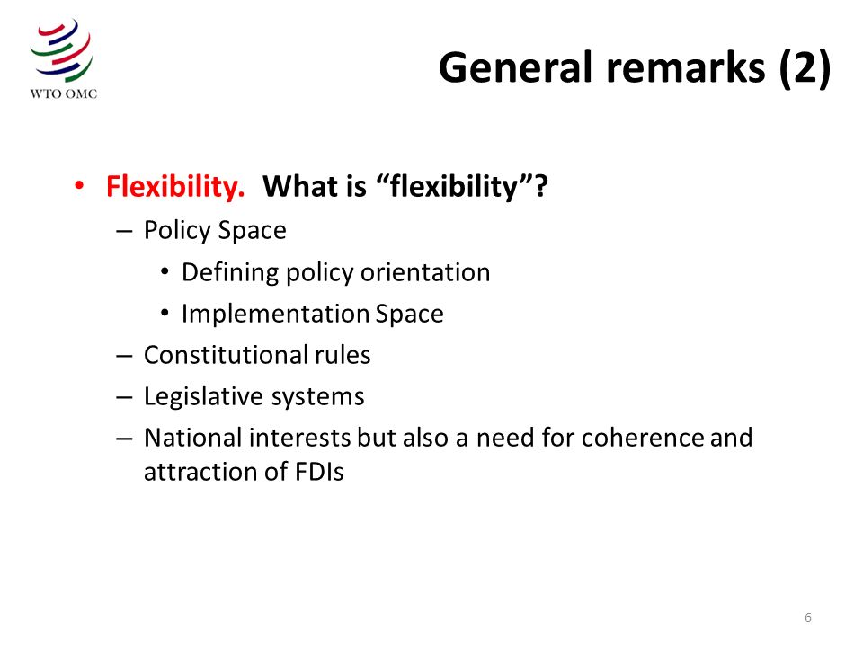 General remarks (2) Flexibility. What is flexibility Policy Space