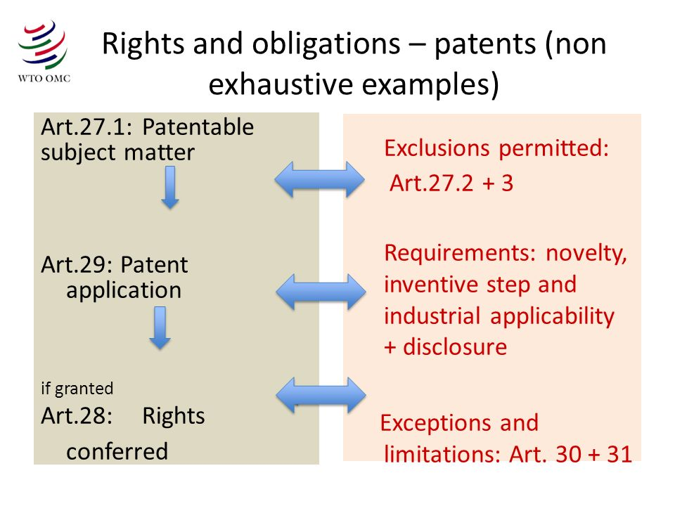 Rights and obligations – patents (non exhaustive examples)
