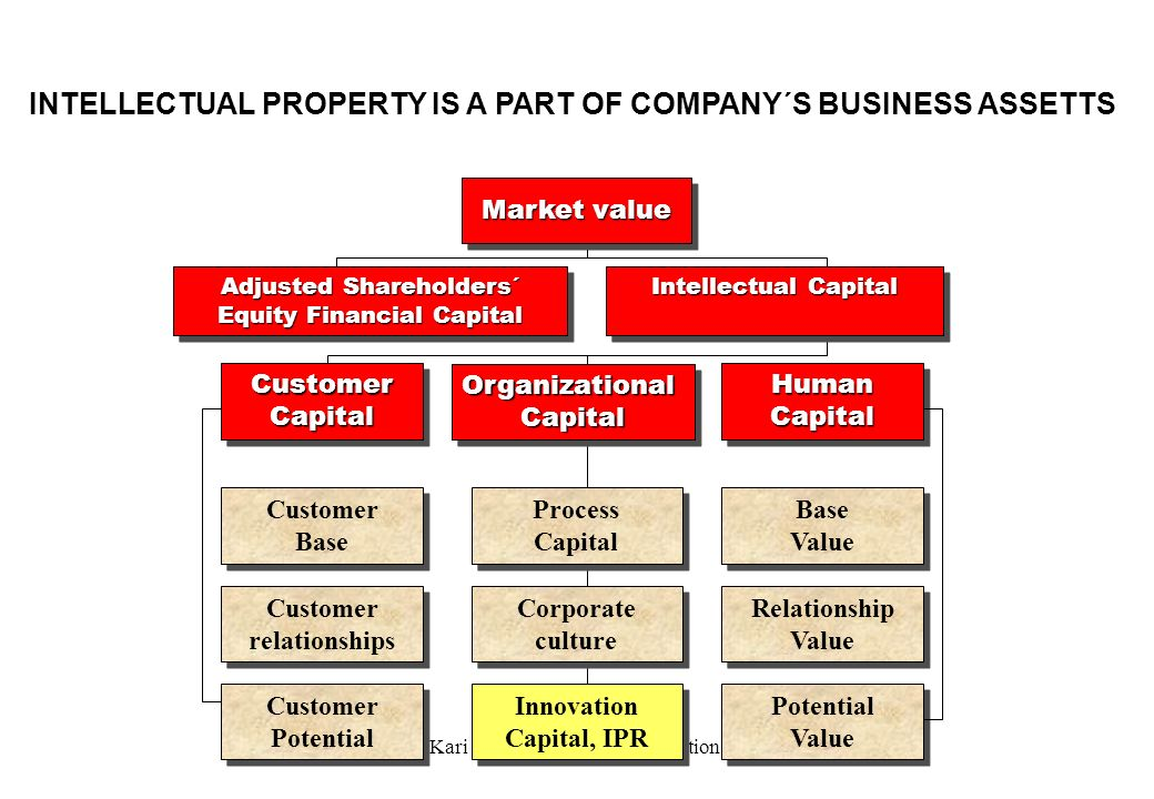 INTELLECTUAL PROPERTY IS A PART OF COMPANY´S BUSINESS ASSETTS